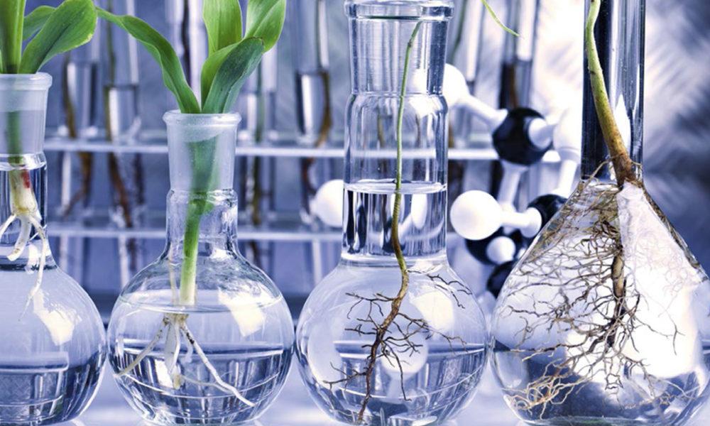 ekologicheskaya-laboratoriya