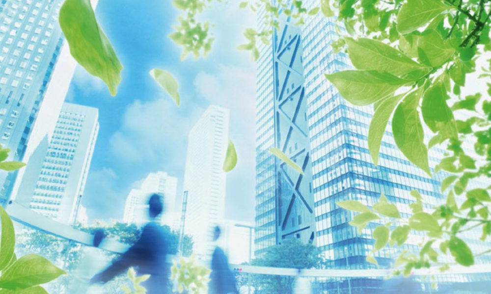 ekologicheskij-audit